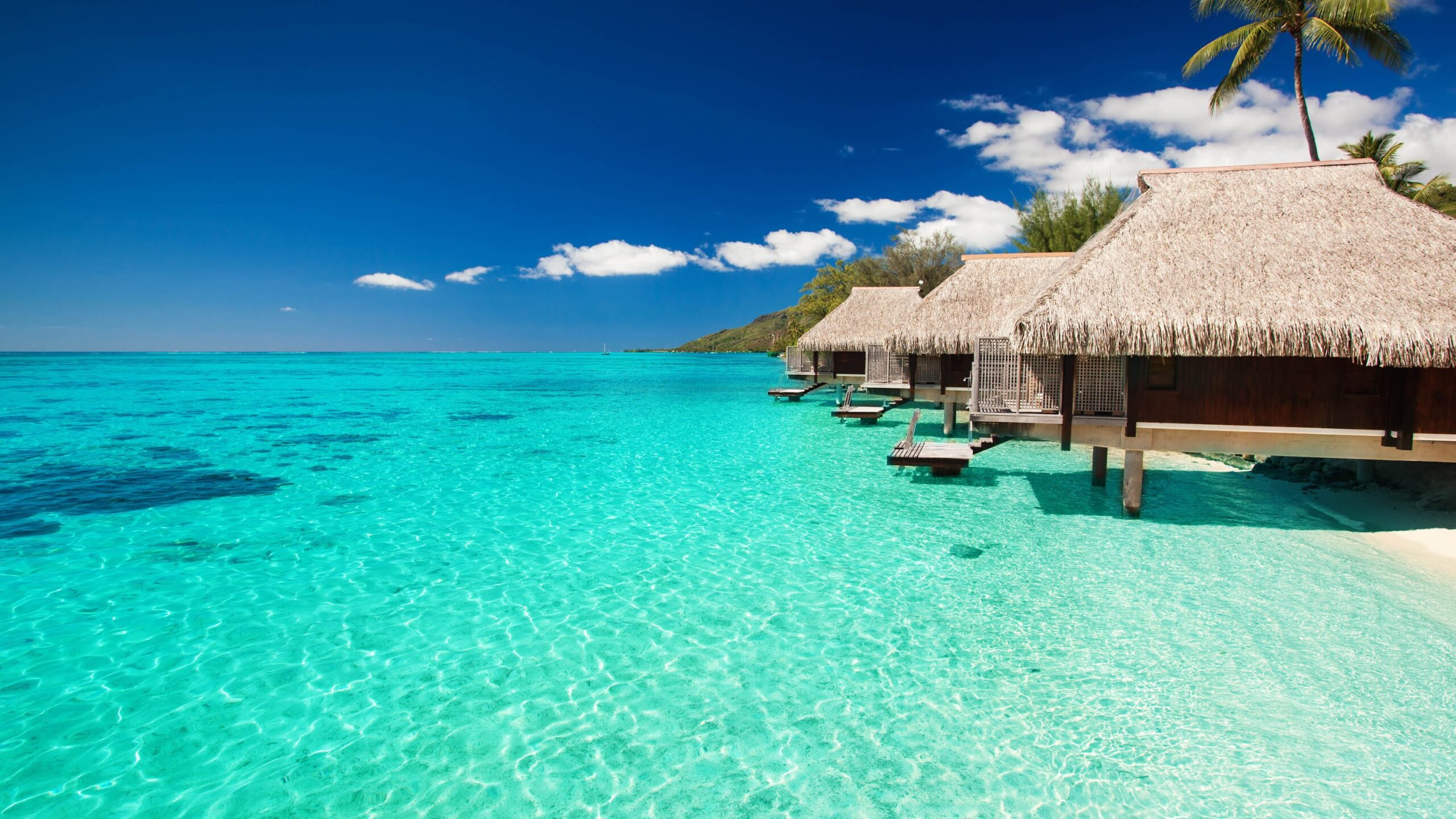 Мальдивы. Актуальные правила въезда