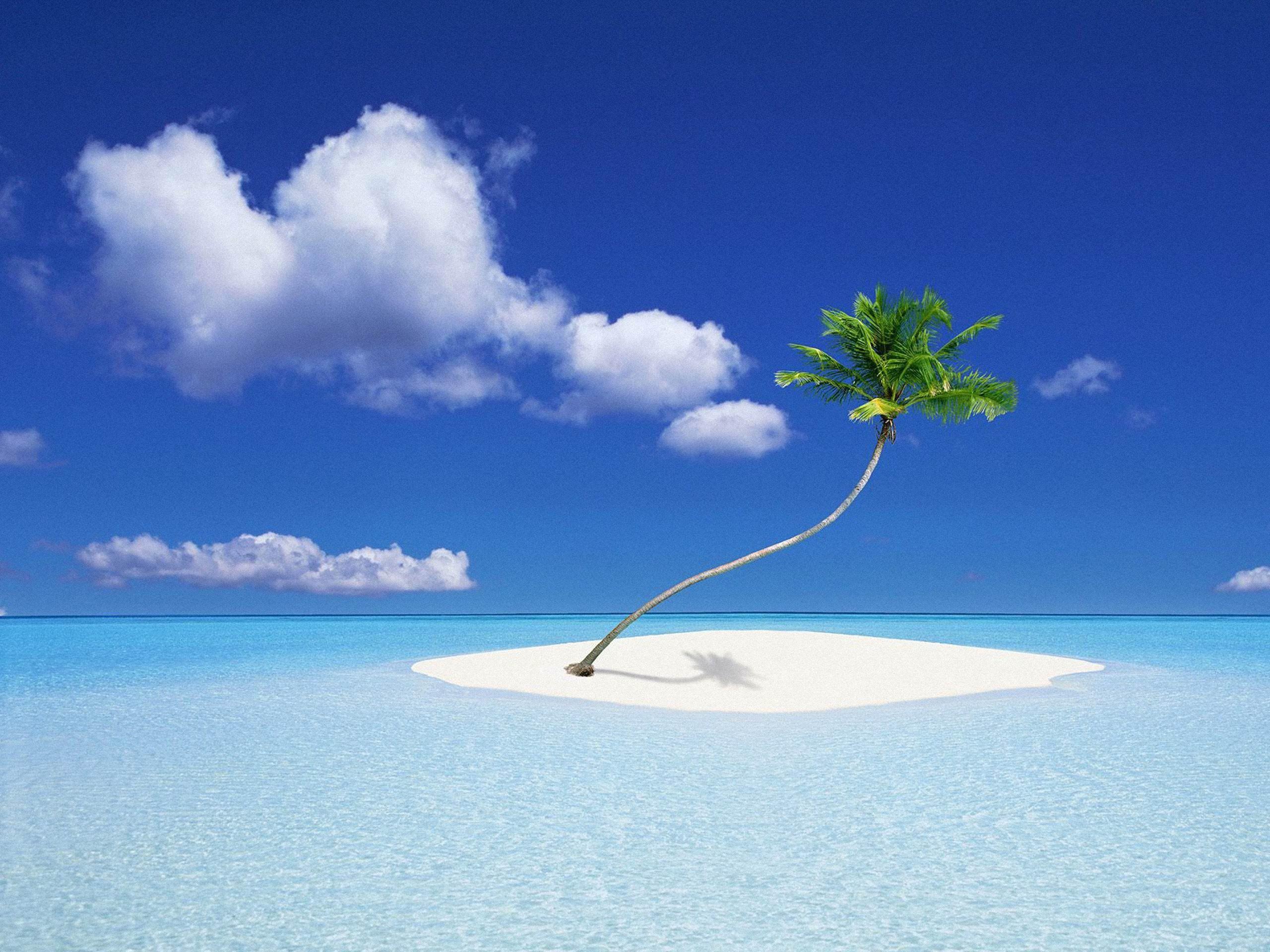 <span>Январские Мальдивы в цене!</span>