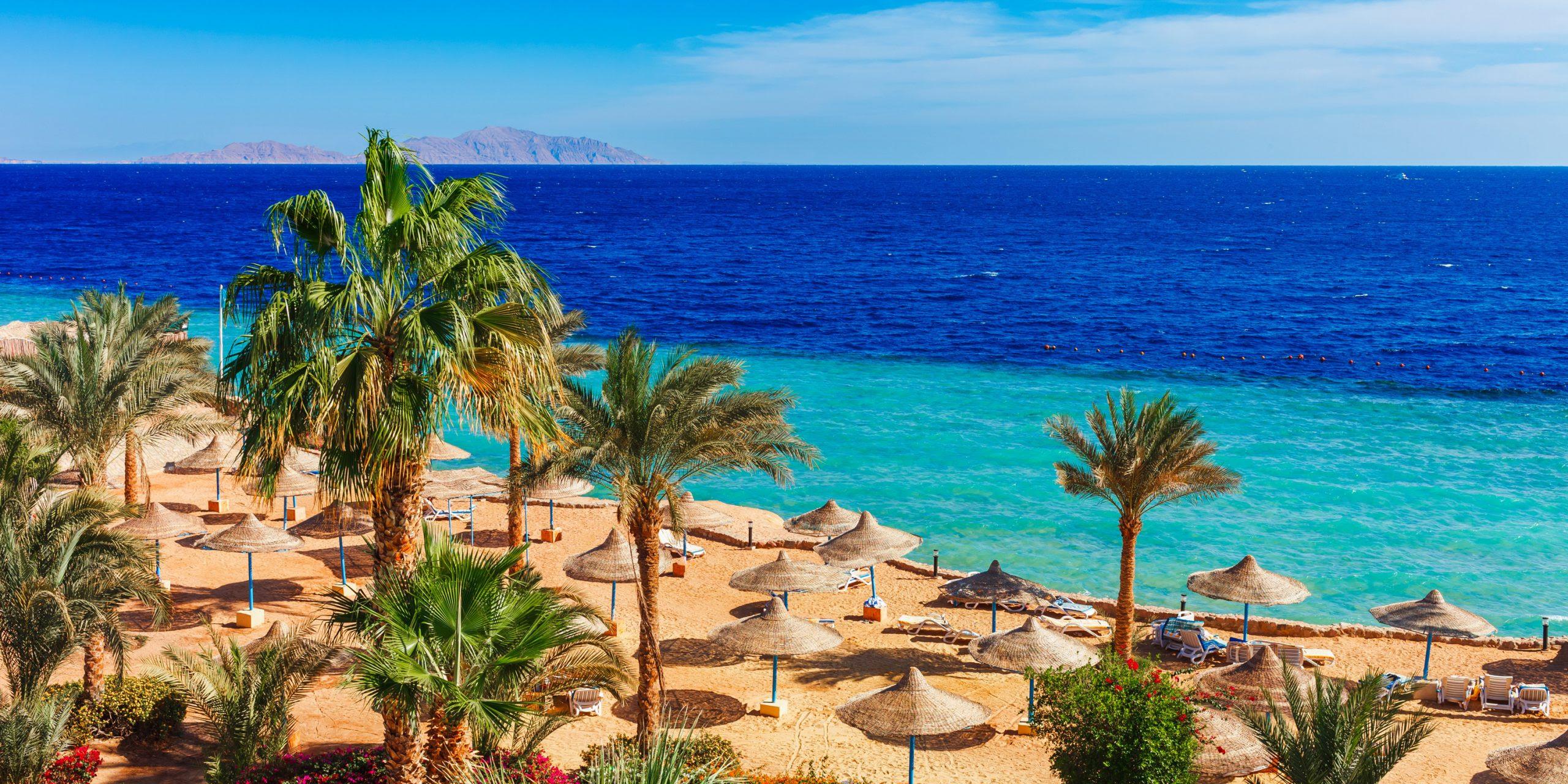 <span>Январские каникулы в лучах египетского солнца!</span>