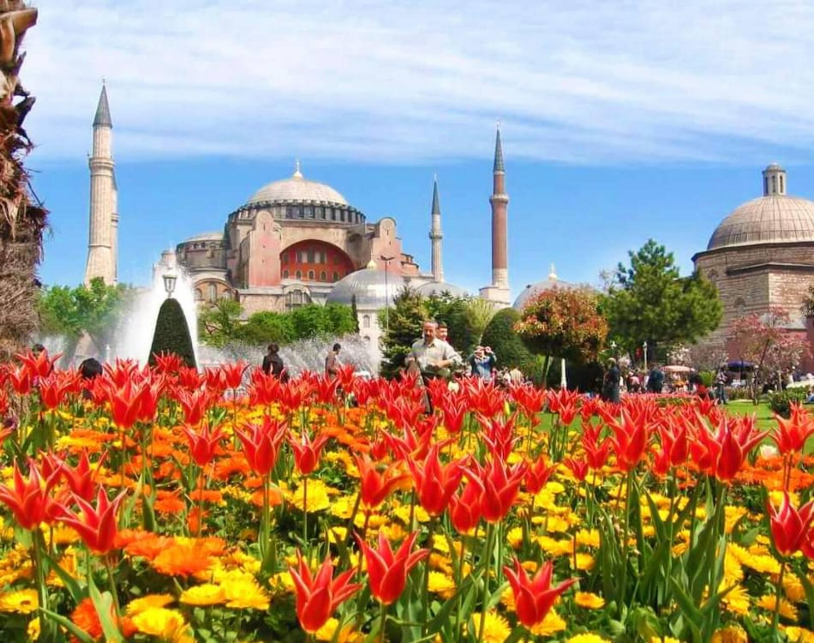 <span>Фестиваль тюльпанов в Стамбуле!</span>
