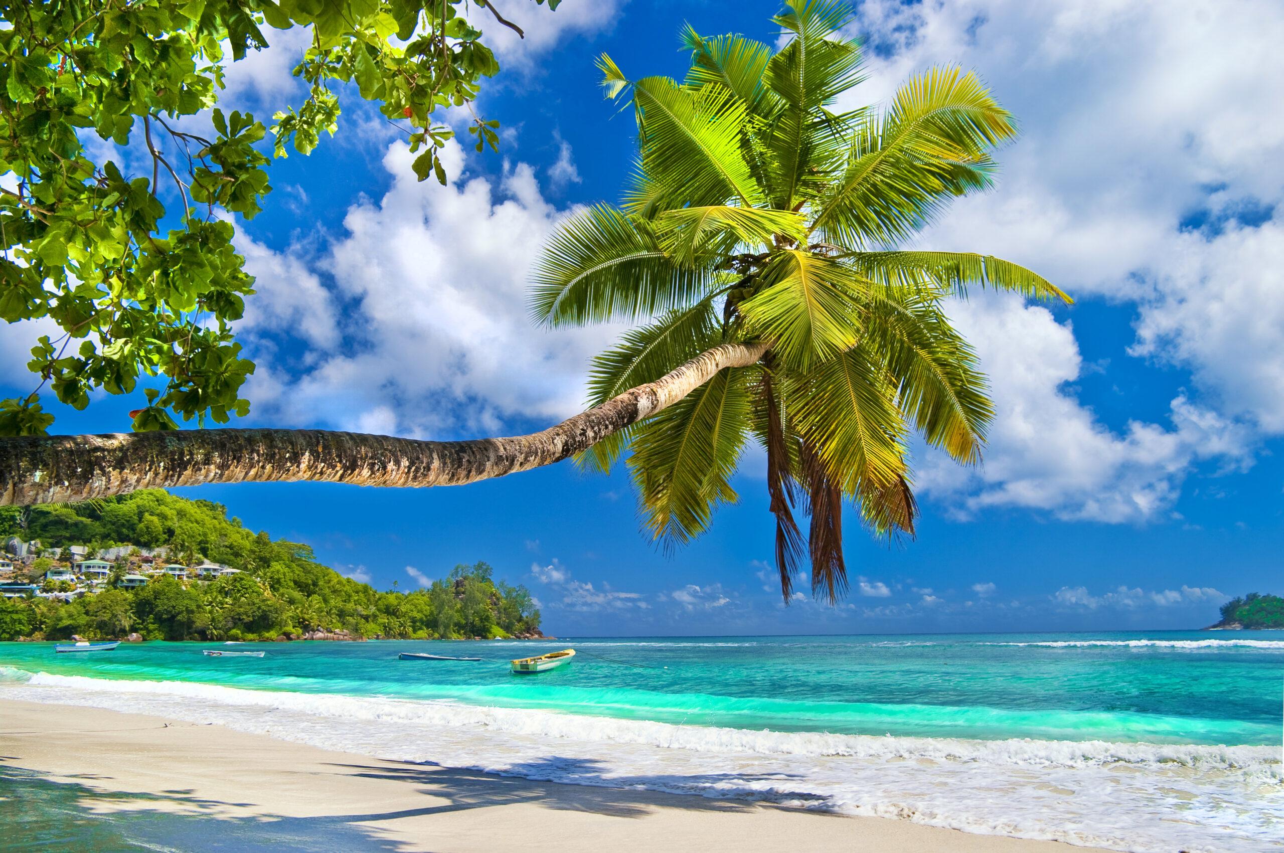 Зустрічаємо новорічні свята на Сейшелах!<br>Прямі рейси Air Seychelles